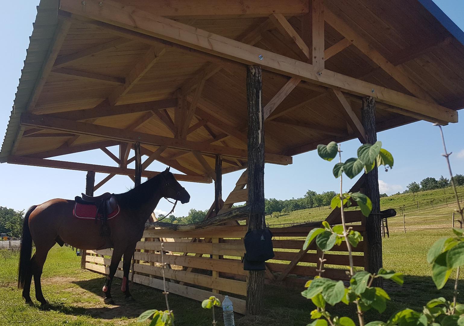 abri mise en selle pour chevaux à Villaudric